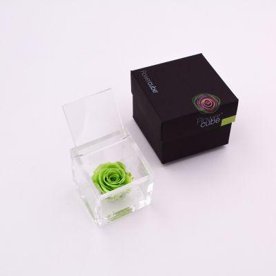 Flowercube   Rosa stabilizzata colore verde (6x6 cm)