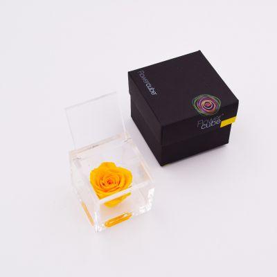 Flowercube   Rosa stabilizzata colore giallo (6x6 cm)