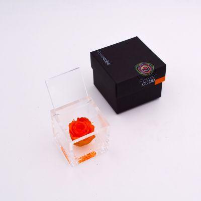 Flowercube |Rosa stabilizzata colore arancio (6x6 cm)