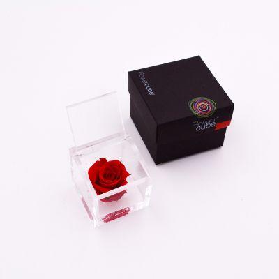 Flowercube | Rosa stabilizzata colore rosso (6x6 cm)