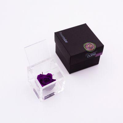 Flowercube | Rosa stabilizzata colore viola (6x6 cm)