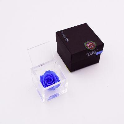 Flowercube | Rosa stabilizzata colore azzurro (6x6 cm)