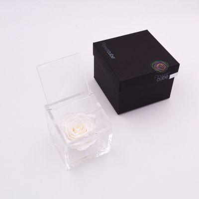 Flowercube | Rosa stabilizzata colore bianco (8x8 cm)