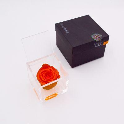 Flowercube | Rosa stabilizzata colore arancio (8x8 cm)