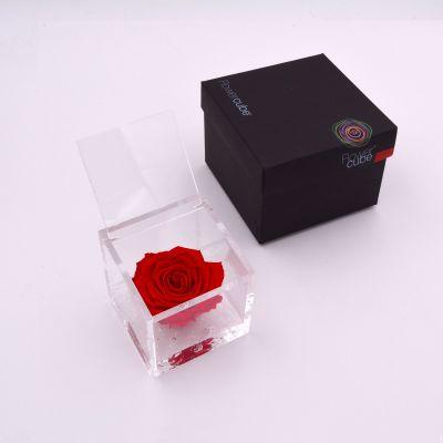 Flowercube | Rosa stabilizzata colore rosso (8x8 cm)