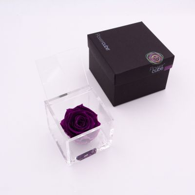Flowercube | Rosa stabilizzata colore viola (8x8 cm)