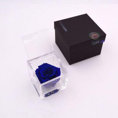 Flowercube   Rosa stabilizzata colore blu (10x10 cm)