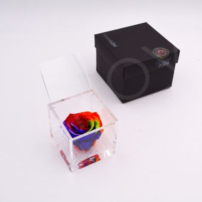 Flowercube | Rosa stabilizzata rainbow (8x8 cm)