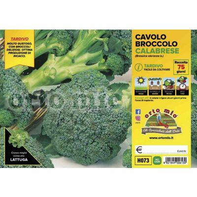 Cavolo Broccolo Marathon