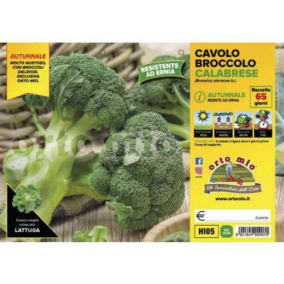 Cavolo Broccolo Centauro