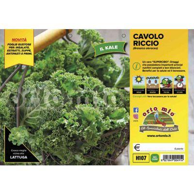 Altri Cavoli Green Kale