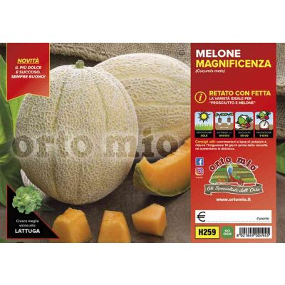 Melone Retato Con Fetta