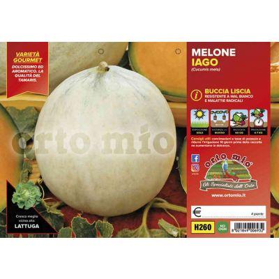 Melone Liscio H260