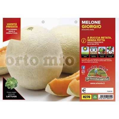 Melone Retato Senza Fetta H270