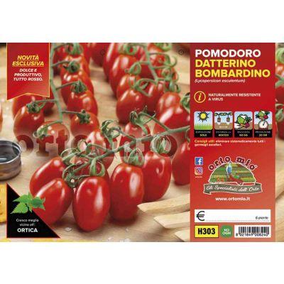 Pomodoro Datterino Tutto Rosso