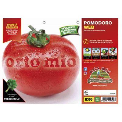 Pomodoro Tondo Mensa Web H305