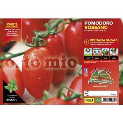 Pomodoro Da Salsa Da Palo H30A