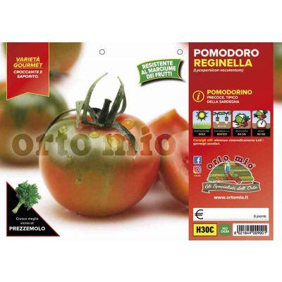 Pomodoro Sardo Reginella H30C