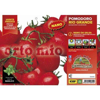 Pomodoro Da Salsa Rio Grande H30F