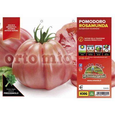 Pomodoro Cuore Ligure Rosa H30G
