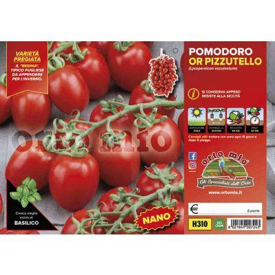Pomodoro Regina Pizzutello H310