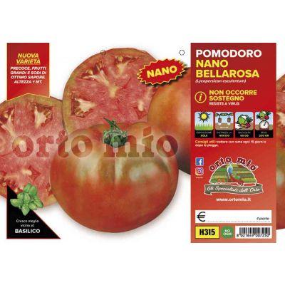 Pomodoro Tondo Nano Bellarosa