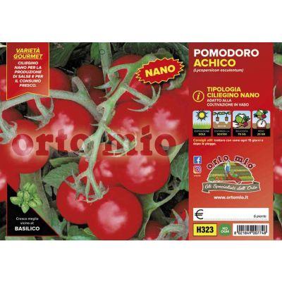 Pomodoro Ciliegino Nano Achico H323