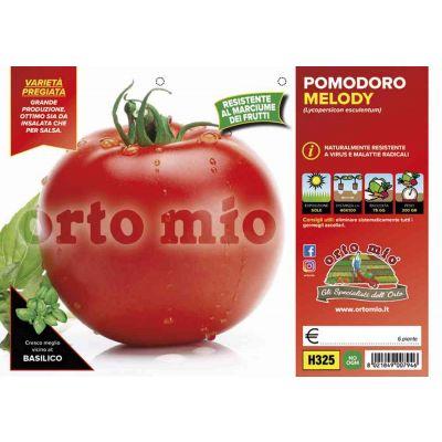 Pomodoro Tondo Mensa Melody H325