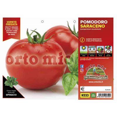 Pomodoro Tondo Mensa Saraceno H333