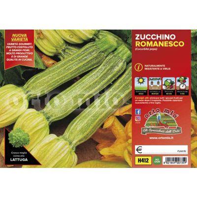 Zucchino Romanesco Floridus