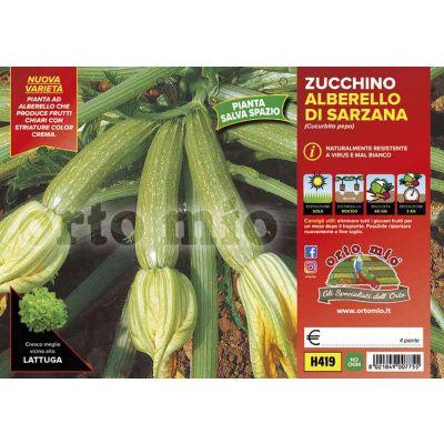 Zucchino Alberello Di Sarzana