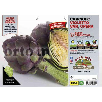 Carciofo Violetto Opera