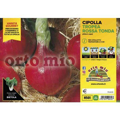 Cipolle Tropea Rossa Tonda H501