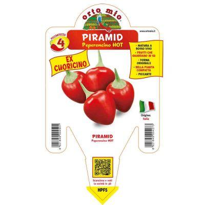 Peperoncino Cuoricino Hot in vaso 14 HPF5