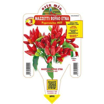 Peperoncino Etna Hot in vaso 14 HPF6