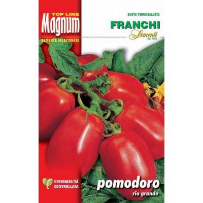 Pomodoro grande(extob) busta Magnum