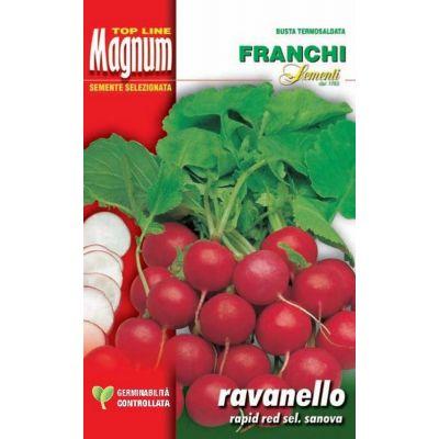Ravanello r.red sanova busta Magnum