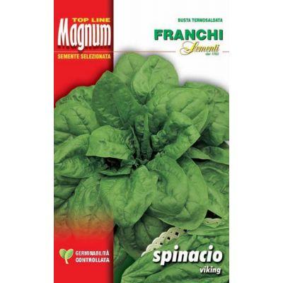 Spinacio viking busta Magnum