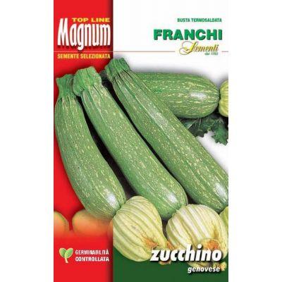 Zucchino genovese busta Magnum