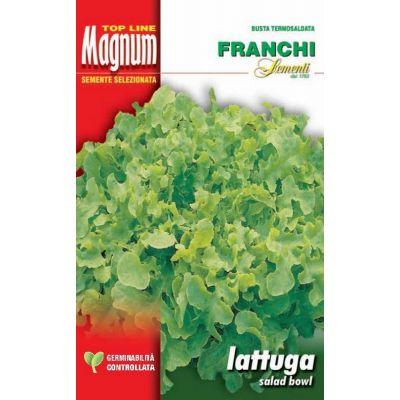 Lattuga salad bowl busta Magnum