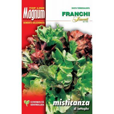Misticanza lattughe busta Magnum