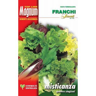 Misticanza 4 stagioni busta Magnum