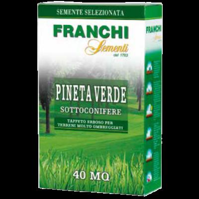 Semi per prato pineta verde sottoconifere 1 Kg